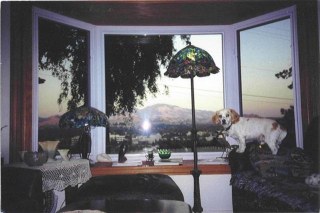 specialty-window-1