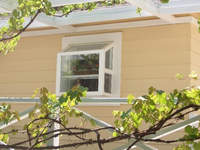 specialty-window-4